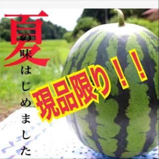 現品限り!出品レアサイズ2L!絶品厳選減農薬ブランド西瓜(2L/1玉/美品)(フルーツ)