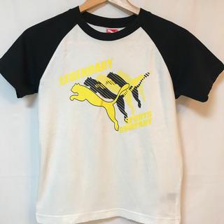 プーマ(PUMA)のsize140★PUMA★半袖  ブラック×ホワイト!!(Tシャツ/カットソー)