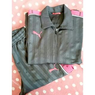 PUMA - プーマ ジャージ 上下セット ピンク