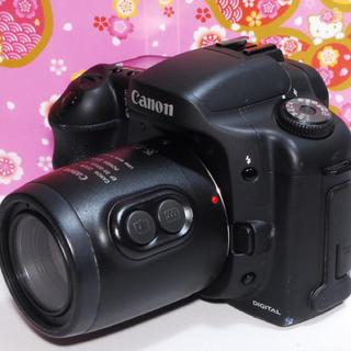 キヤノン(Canon)の⭐️リーズナブルに始めよう⭐️Canon Eos 10D レンズキット⭐️(デジタル一眼)