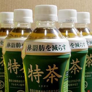 ■訳あり サントリー 特茶 500ml(特保)4箱(96本入)(茶)