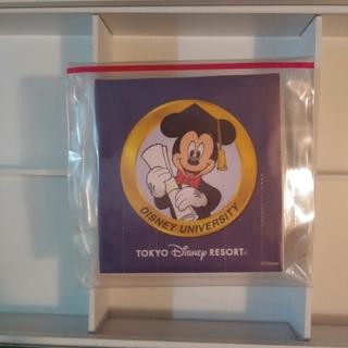 Disney - 未使用TDRディズニーキャスト限定ディズニーメモ♪