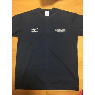 ミズノ(MIZUNO)のセントラル Tシャツ(Tシャツ(半袖/袖なし))