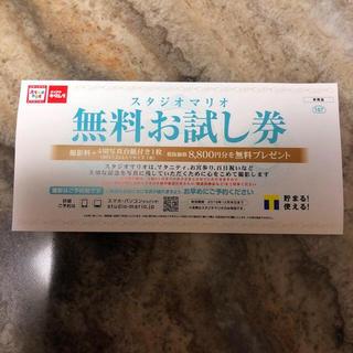 キタムラ(Kitamura)の売り切り スタジオマリオ 無料撮影券(その他)