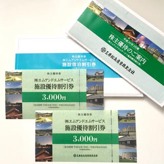 三井松島産業株式会社 株主優待 6000円分(その他)