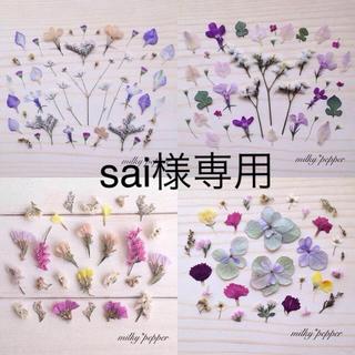 ドライフラワー 押し花 オーダー品(ドライフラワー)