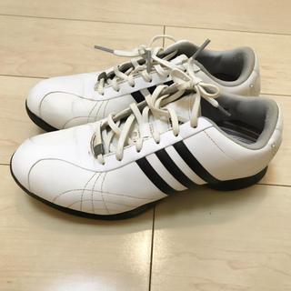 アディダス(adidas)の三連休最終値下げ‼︎送料込み‼︎ゴルフシューズ♡アディダス レディース 24㎝(シューズ)