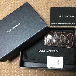 DOLCE&GABBANA - ドルガバ マネークリップ パイソン