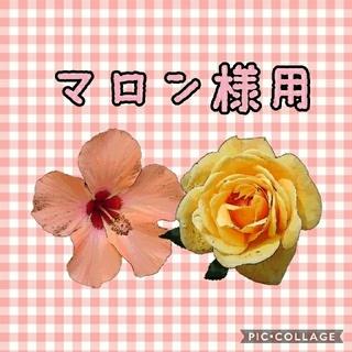 コウゲンドウ(江原道(KohGenDo))の✿ マロン様用 (2つセット)(その他)