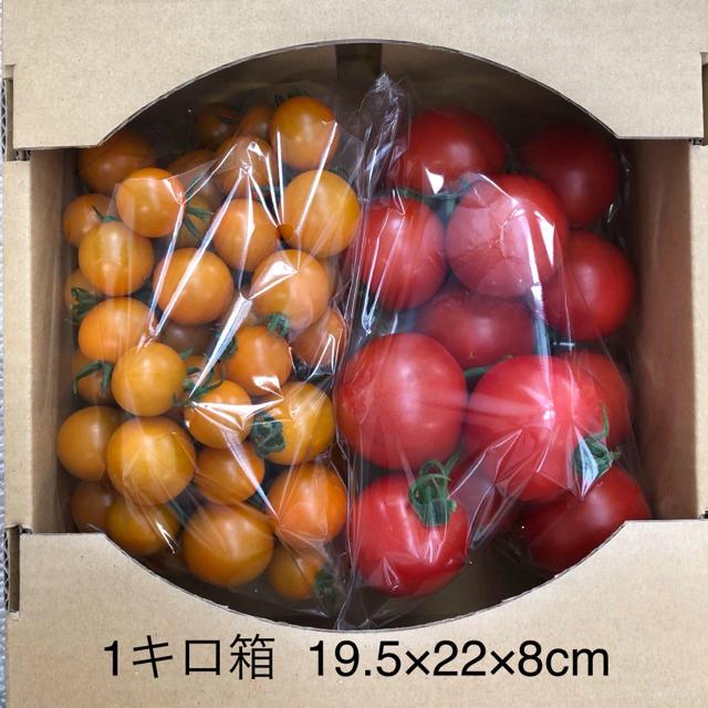 オレンジ千果&フルティカ 2キロ 食品/飲料/酒の食品(野菜)の商品写真