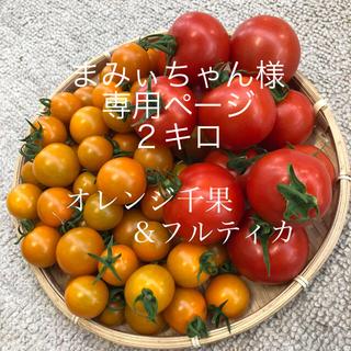 オレンジ千果&フルティカ 2キロ(野菜)