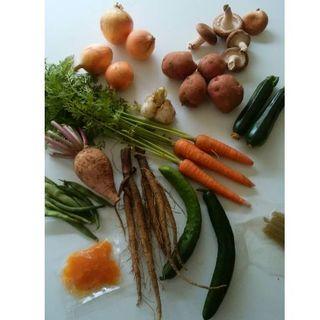 元氣のお裾分け野菜BOX(野菜)