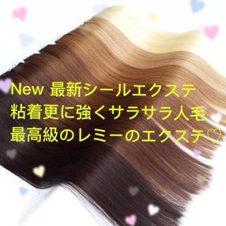 シールエクステ 1本50円 20枚5シート1200円 評価良い品送ります♡(ロングストレート)