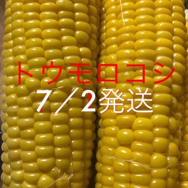 マミィちゃん専用 食品/飲料/酒の食品(野菜)の商品写真
