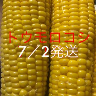 マミィちゃん専用(野菜)