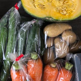 ✴︎無農薬野菜✴︎(野菜)