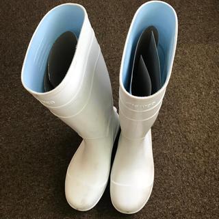 安全長靴 25cm (長靴/レインシューズ)