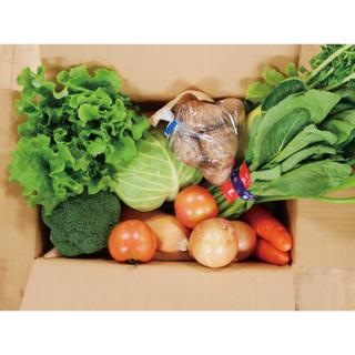 茨城県産 野菜セット(野菜)