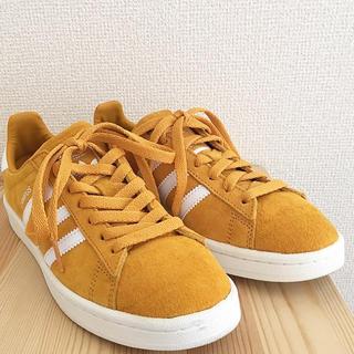 アディダス(adidas)の adidas CAMPUS 23cm(スニーカー)