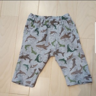 アコバ(Acoba)のアコバ100 サメ アンクルパンツ(パンツ/スパッツ)