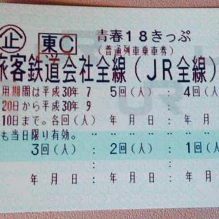青春18きっぷ・7月31日迄返却!2回分!(鉄道乗車券)