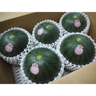 黒小玉スイカ4~6玉入り 熊本県植木町産 送料込み(野菜)