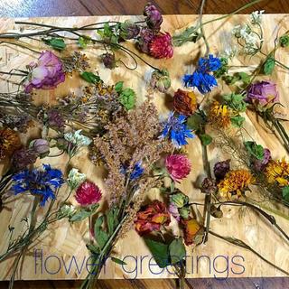 ドライフラワー  花材 ボタニカルセット 加工用 ジャガイモのお花入り(ドライフラワー)