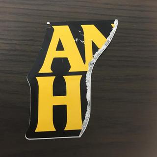 アンチヒーロー(ANTIHERO)の【縦9.5cm横7.8cm】ANTI HERO skateboardステッカー(ステッカー)