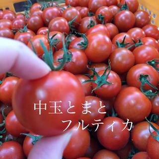 中玉トマト フルティカ 2キロ(野菜)