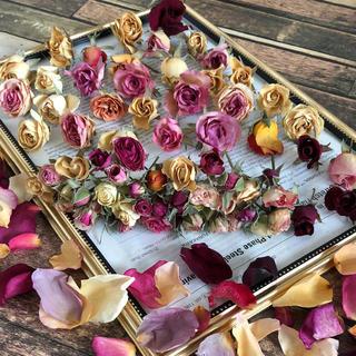 色鮮やか♪薔薇ドライフラワー 色々詰め合わせセット(ドライフラワー)