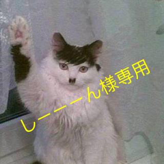 しーーーん様 専用(レザージャケット)