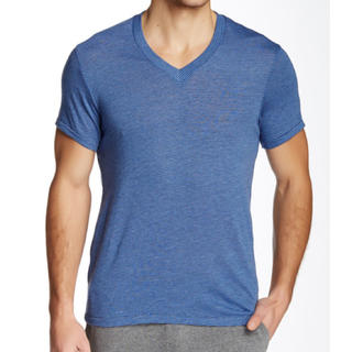 オルタナティブ(ALTERNATIVE)の新品 Alternativeオルタナティブ メンズ VネックTシャツ ボーダー(Tシャツ(半袖/袖なし))