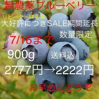 群馬県産 無農薬 ブルーベリー 900g (フルーツ)