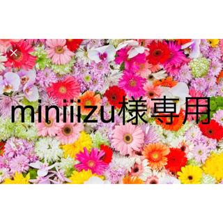 ジーユー(GU)の2点セット miniiizu様専用ページ(ひざ丈スカート)