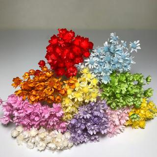 スターフラワー ミニ 100本 花材 ドライフラワー (ドライフラワー)