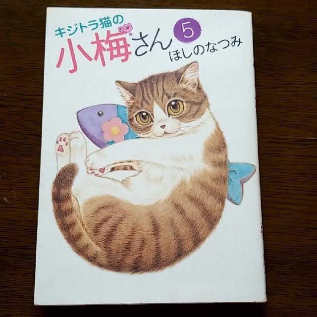 の 小梅 さん キジトラ 猫