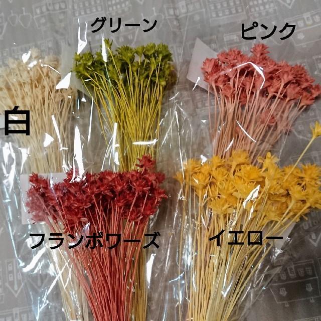 【割引変更‼️】ミニコーンフラワー(5色) ハンドメイドのフラワー/ガーデン(ドライフラワー)の商品写真