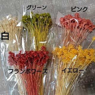 【割引変更‼️】ミニコーンフラワー(5色)(ドライフラワー)