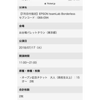 チームラボ ボーダレス お台場パレットタウン 7/17 チケット 2枚ペア(遊園地/テーマパーク)