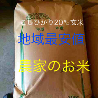 農家直産 こしひかり20㌔玄米 お米(米/穀物)