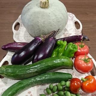 朝採れ野菜セット