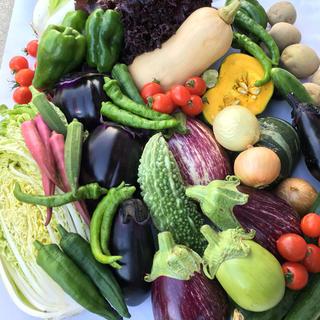 野菜セット 70
