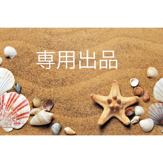 新品 春夏新作 イルビゾンテ キーケース  ナチュラル/メンズ レディース