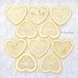 押しフルーツ/ドライフルーツ/ボタニカル素材(各種パーツ)