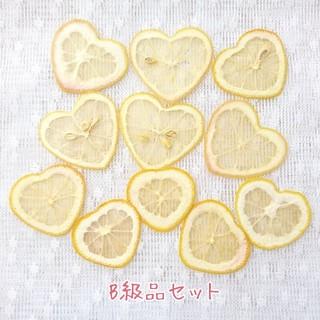 押しフルーツB級品/ドライフルーツ/ボタニカル素材(各種パーツ)