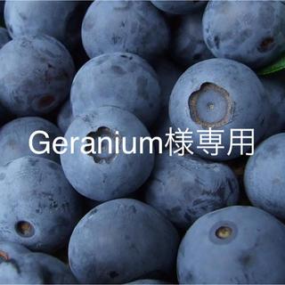 今が旬 美味しいブルーベリー 完全無農薬 2キロ 7月14日午前朝摘み出荷分(フルーツ)