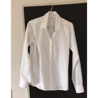アオヤマ(青山)のYシャツ / ANCHOR WOMAN(シャツ/ブラウス(長袖/七分))