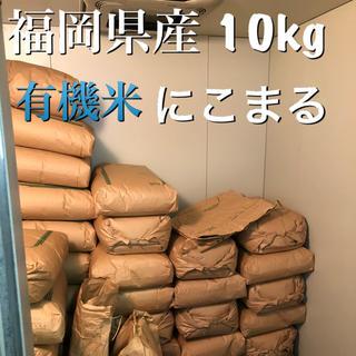 福岡県産 にこまる  10kg