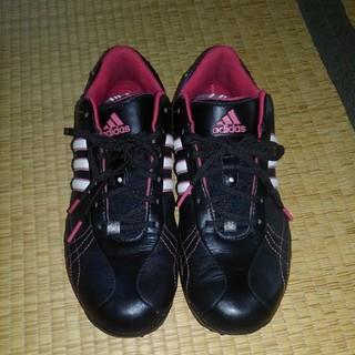 アディダス(adidas)のnocomo様専用ゴルフシューズ 24.5~25(その他)
