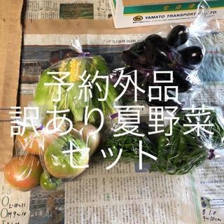 夏野菜訳ありセット(野菜)